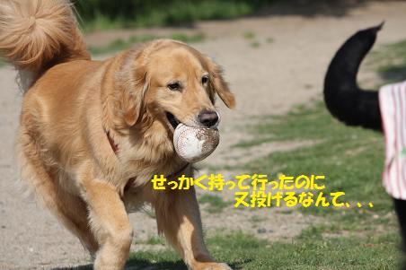 f0114128_21251933.jpg