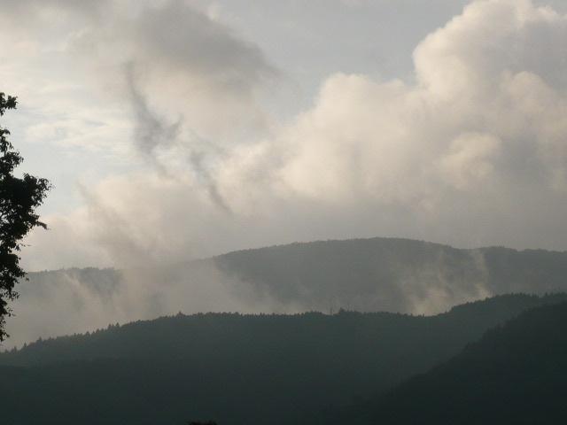 第29回スポニチ山中湖ロードレース_c0100865_18262625.jpg