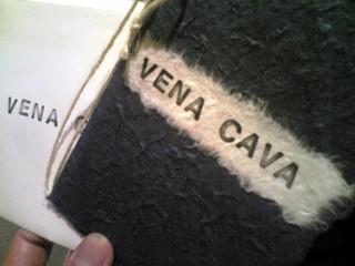 Private SalonVena Cava ~身も心もリフレッシュ~_f0185174_2223765.jpg