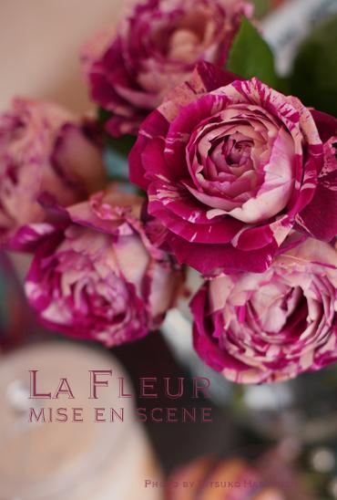 新種のバラ_f0127281_1352930.jpg