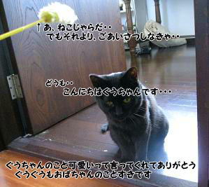 b0084186_12153478.jpg
