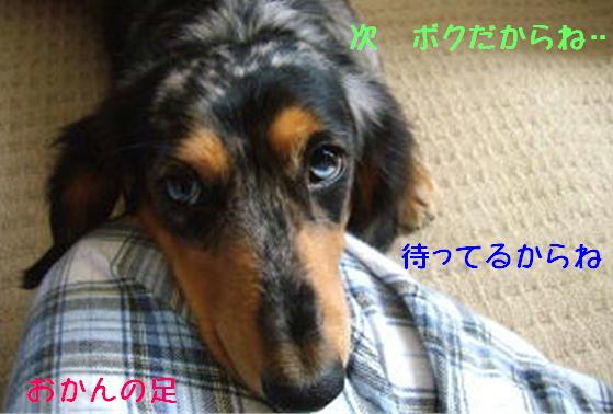 f0195891_1445361.jpg