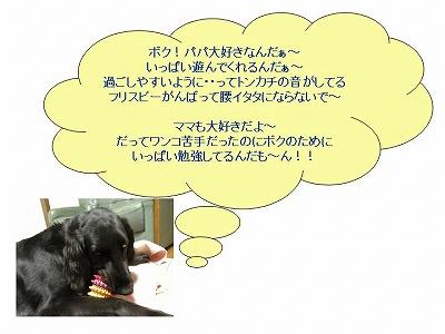 f0176499_165983.jpg