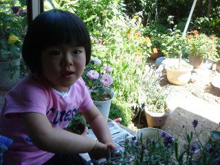 和みカフェでの商品の紹介 & マコ、花を切る!_e0166301_15342128.jpg