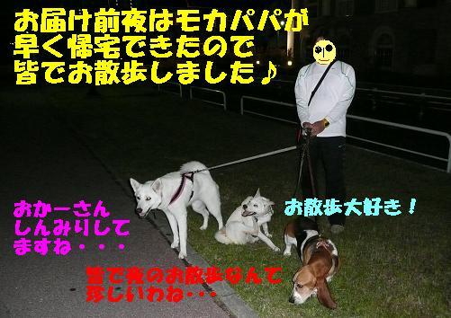 f0121712_23144639.jpg