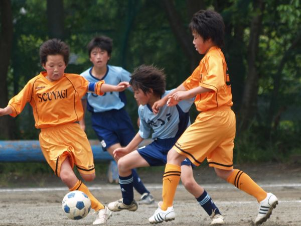 全日本少年サッカー大会県予選_a0109316_1624343.jpg