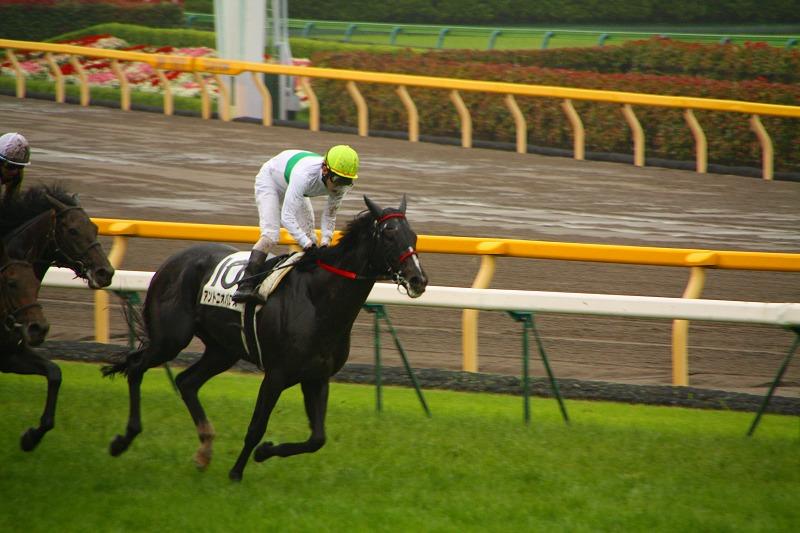 有馬学のRFC競馬