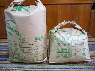 古代米の芽が出ました_b0123970_20142265.jpg