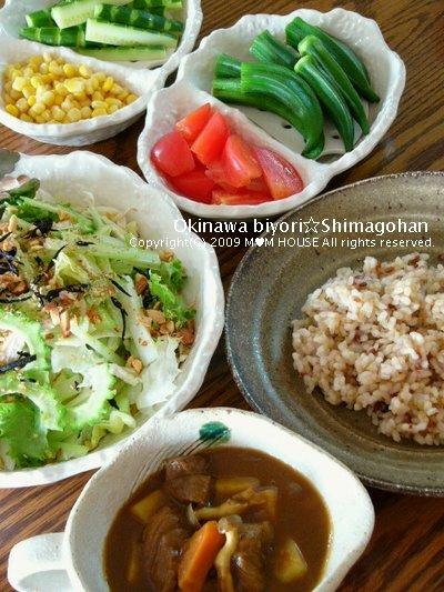 野菜をたくさん食べよう~(^0^)/ ☆休日カレーの日♪_c0139375_14234851.jpg