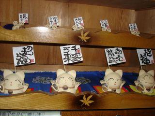和みカフェの小物紹介Part3 & 畑の中のマコ_e0166301_2324258.jpg