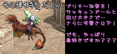 男女問わずデート(*ノノ)キャ_f0072010_1483535.jpg