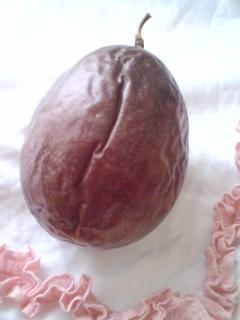 passion fruit_f0064823_191284.jpg