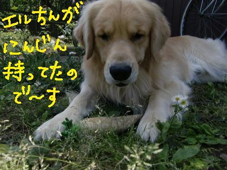 f0176830_214912.jpg