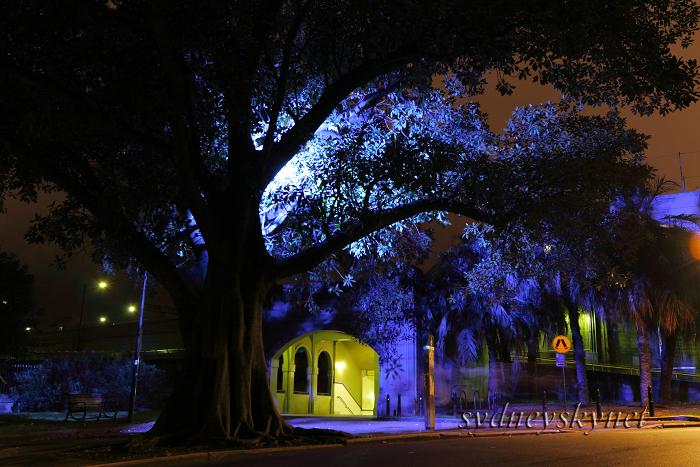 --vivid sydney 2009-- part 1_f0084337_2275436.jpg