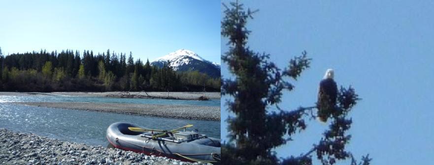 東南アラスカ その4 <ヘインズ>_b0135948_7305411.jpg