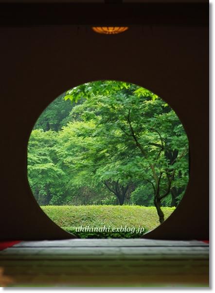雨上がりの鎌倉・明月院_f0179404_20564189.jpg