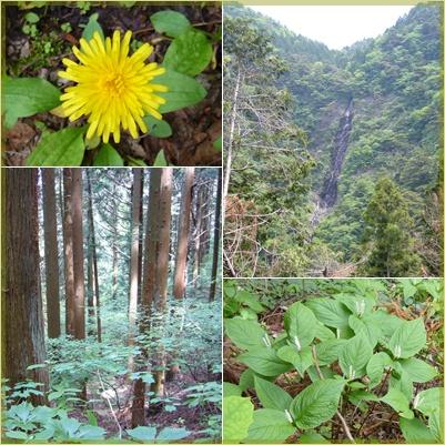 甲州高尾山へ_c0051105_215857.jpg