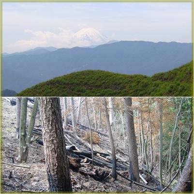 甲州高尾山へ_c0051105_22152588.jpg