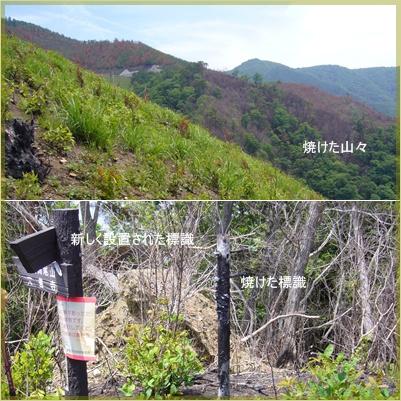 甲州高尾山へ_c0051105_22312413.jpg