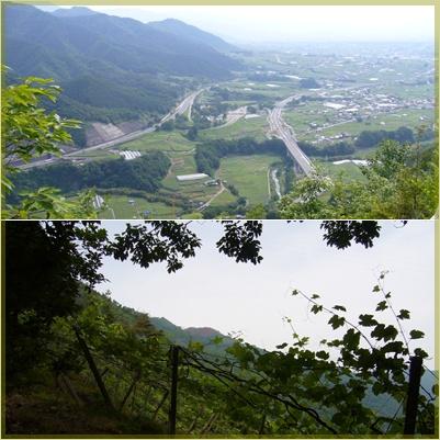 甲州高尾山へ_c0051105_2325245.jpg