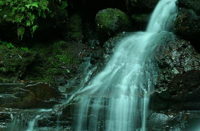 徳仙の滝_d0074828_2350720.jpg