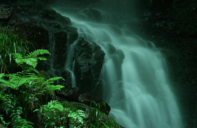 徳仙の滝_d0074828_2352318.jpg