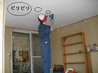 ウッドデッキ改修工事9日目_f0031037_226526.jpg