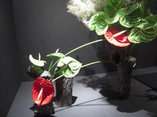 草月花展、新宿高島屋_e0109554_20302914.jpg