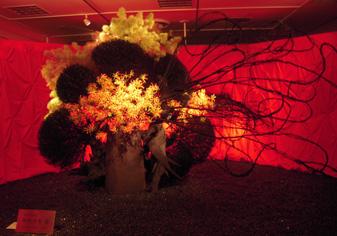 草月花展、新宿高島屋_e0109554_2030998.jpg