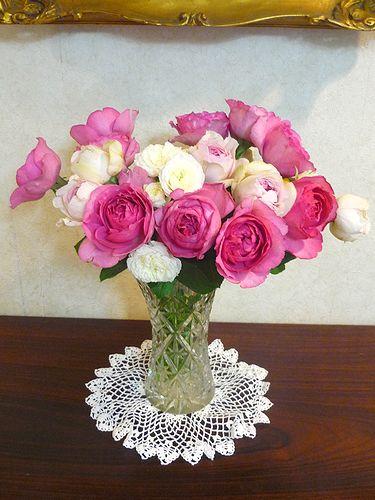 薔薇の名前は。。。  「無垢なる風景-別府から代官山へ」    ブログの世界。。。* *。:☆.。† _a0053662_1011154.jpg