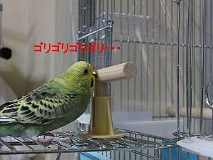 f0196665_0225427.jpg