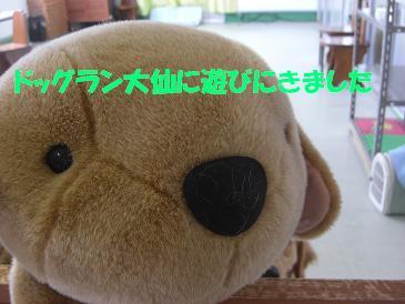 f0170713_124137100.jpg