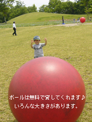 c0029744_4372113.jpg