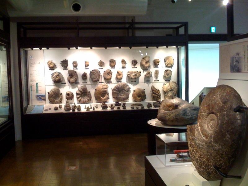 国立科学博物館 大恐竜展_f0011179_7422154.jpg
