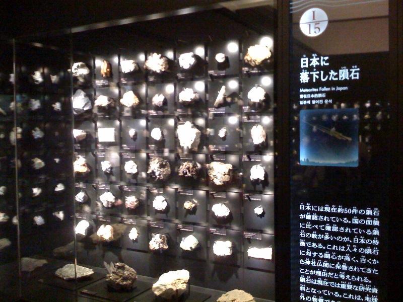国立科学博物館 大恐竜展_f0011179_7442566.jpg