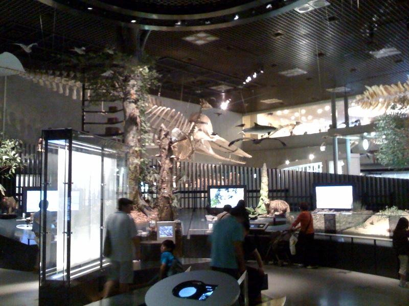 国立科学博物館 大恐竜展_f0011179_7462421.jpg