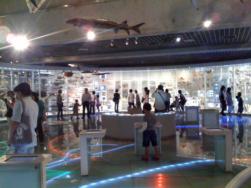 国立科学博物館 大恐竜展_f0011179_747132.jpg