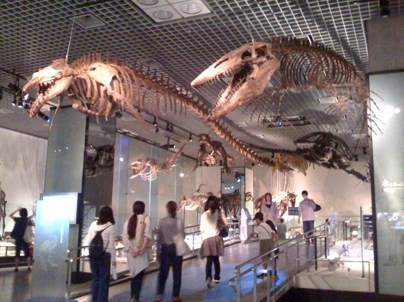 国立科学博物館 大恐竜展_f0011179_7535483.jpg