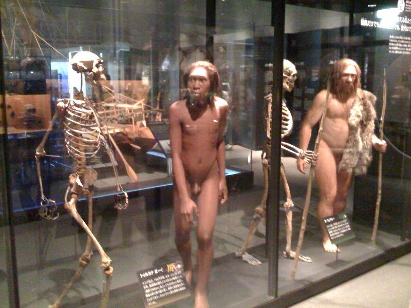 国立科学博物館 大恐竜展_f0011179_7543151.jpg