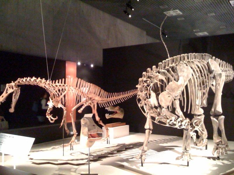 国立科学博物館 大恐竜展_f0011179_7562813.jpg