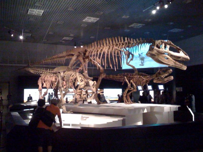 国立科学博物館 大恐竜展_f0011179_757848.jpg