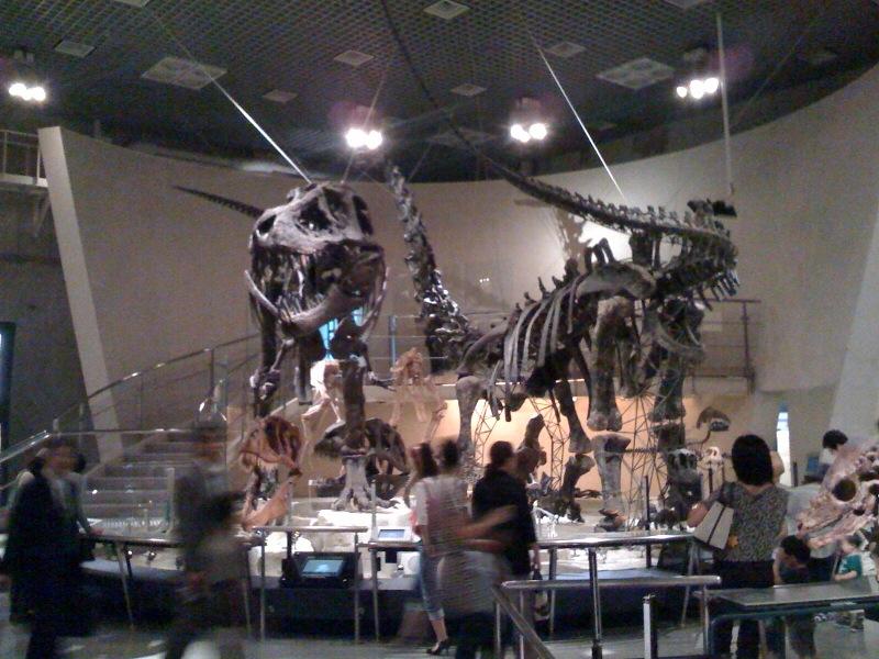国立科学博物館 大恐竜展_f0011179_7582961.jpg