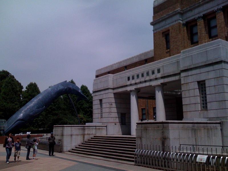 国立科学博物館 大恐竜展_f0011179_801533.jpg