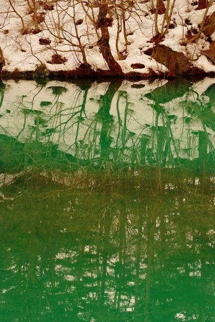 裏磐梯 森の紋様  (午前10時に改定版)_f0050534_9374713.jpg