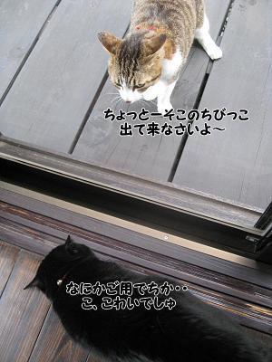 b0084186_23121179.jpg