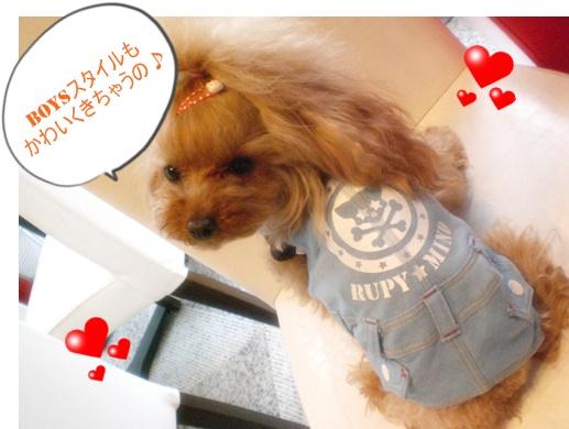 RUPY新作いーっぱい入荷!!_b0084929_14331368.jpg