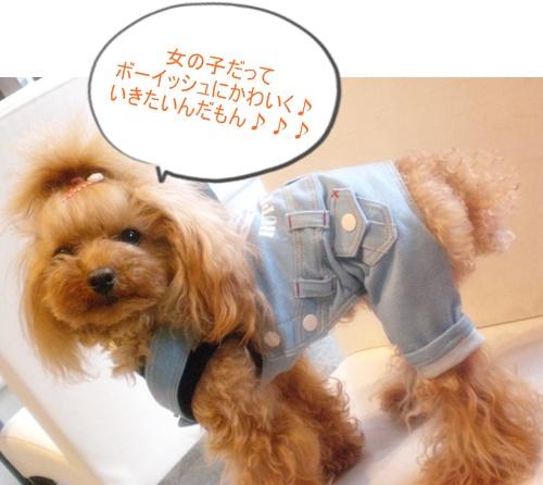 RUPY新作いーっぱい入荷!!_b0084929_14345396.jpg