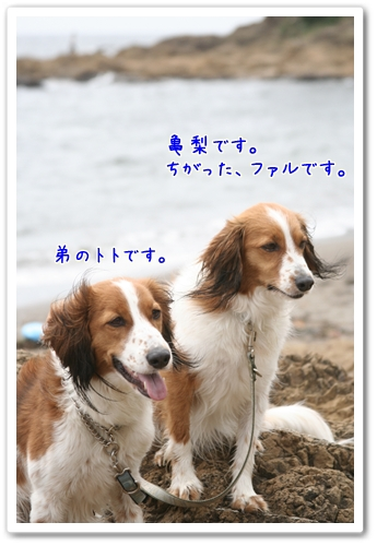d0013149_2233694.jpg