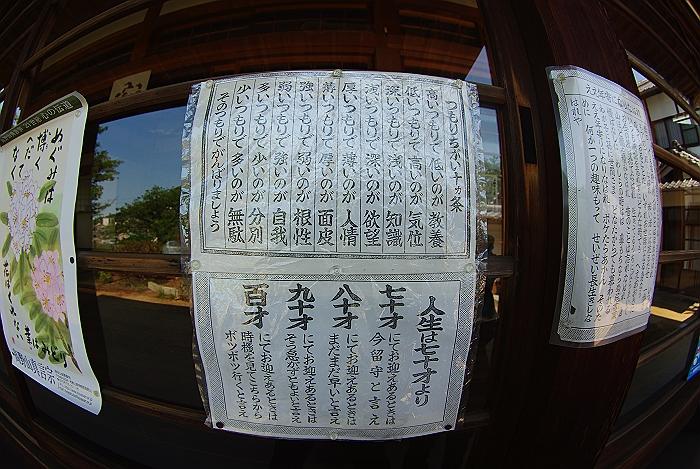 尾道通が訪れる持善院_c0152379_104335.jpg