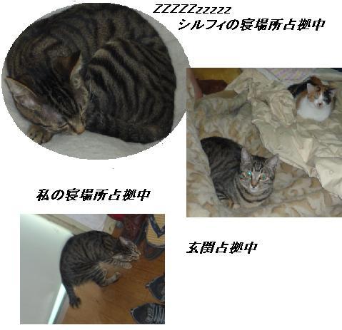 b0112380_10532974.jpg